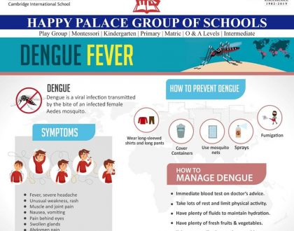 Public Service Message by HPGS Regarding Dengue Fever